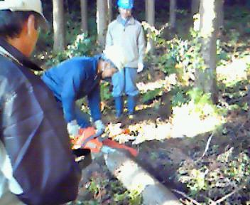森林ボランティア